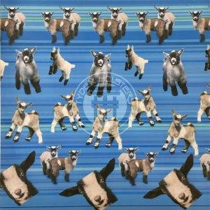 Goats (blue)